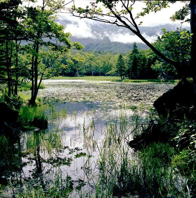 One of the Shiretoko Five Lakes.