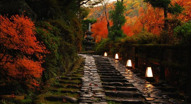 Hoshinoya Kyoto in the autumn.