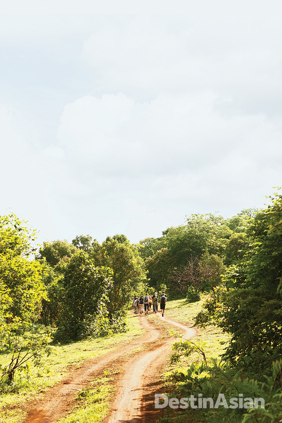 A group of visitors en route to the Elephant Valley Project.