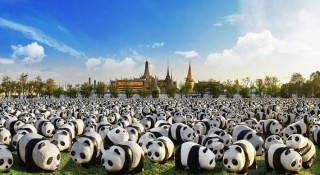 The 1,600 panda paper sculptures are each created with their own unique expression and personality.