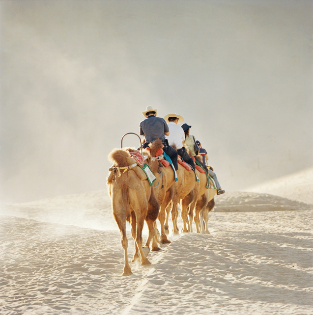 Toursits saddled up on two-hump Bactrian camels for a trek across the singing dunes of Mingsha.