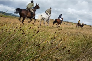 Horsemen on the gallop during the Common Riding in Lauder.