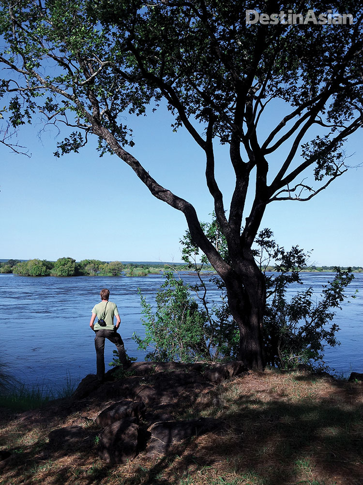 On the banks of the Zambezi at southern Zambia's Mosi-oa-Tunya National Park, just upstream from Victoria Falls.