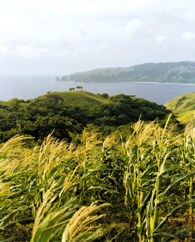 Scenic views along Batan Island's east coast.