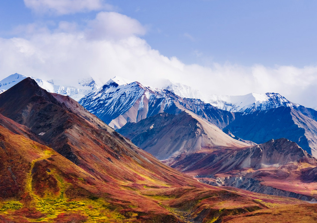 The Alaska Range rises above the autumn-colored tundra of Denali National Park.