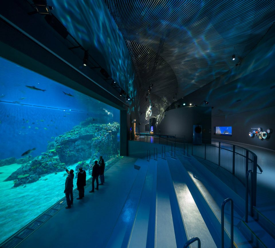 Visitors can choose several different paths through the aquarium to a total of 53 installations. Image courtesy of Adam Mørk.