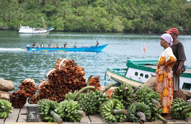 Sandalwood and bananas arrive at market in Banda Neira at dawn.