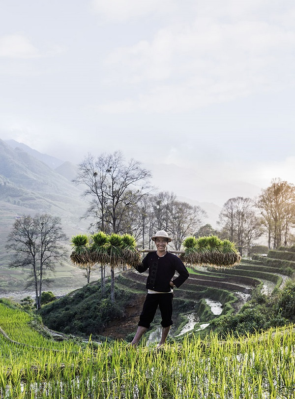 A farmer in the scenic hills of northwest Vietnam.