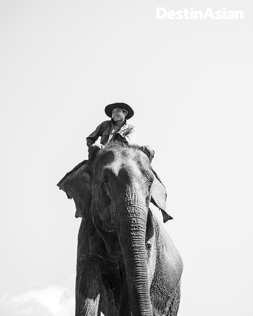 A mahout and his mount at Elephant Village.