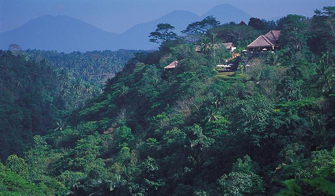 Alila-Ubud-resort-Bali-jungle-surroundings