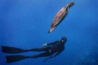 anantara-free-diving