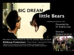 Big Dream Little Bears