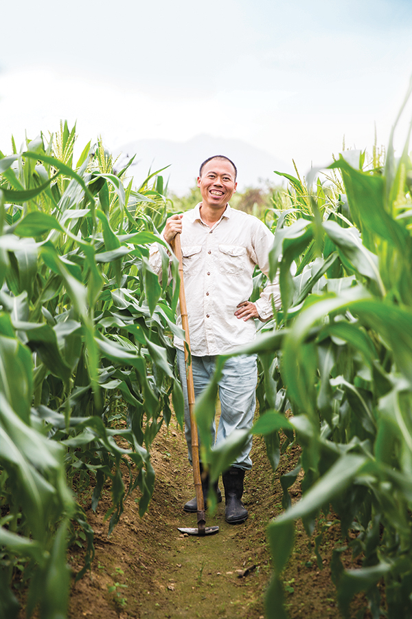 Yuwing Wong in the cornfield at his Au Law Organic Farm.