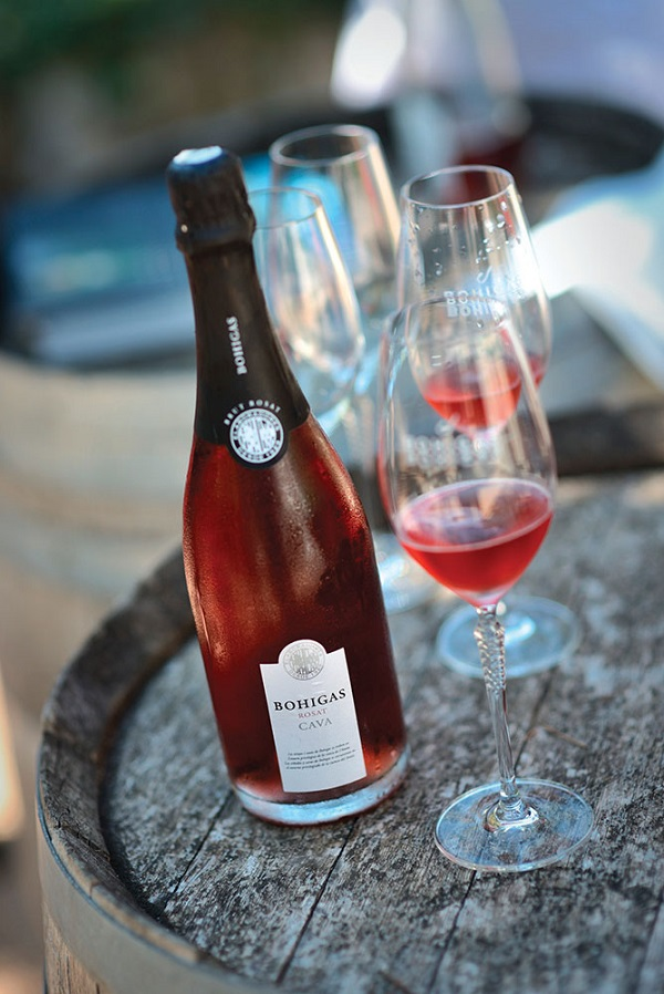 Cava rose at the Bohigas winery.