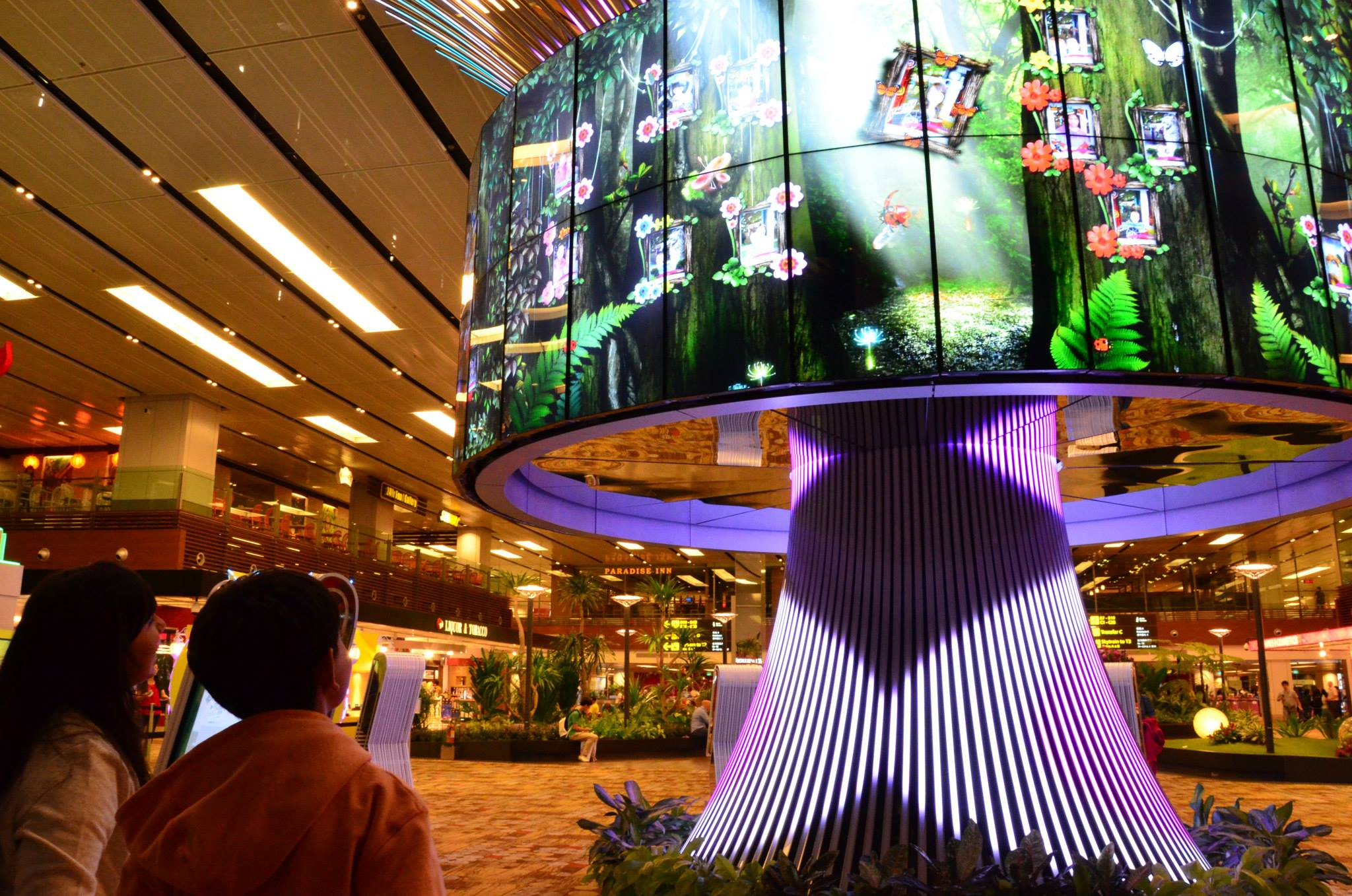 Changi Airport's interactive social tree allows visitors to upload personal photos.