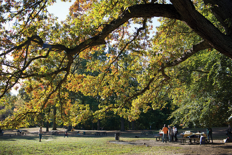Weekend picnickers at Prospect Park, the borough's largest green space.