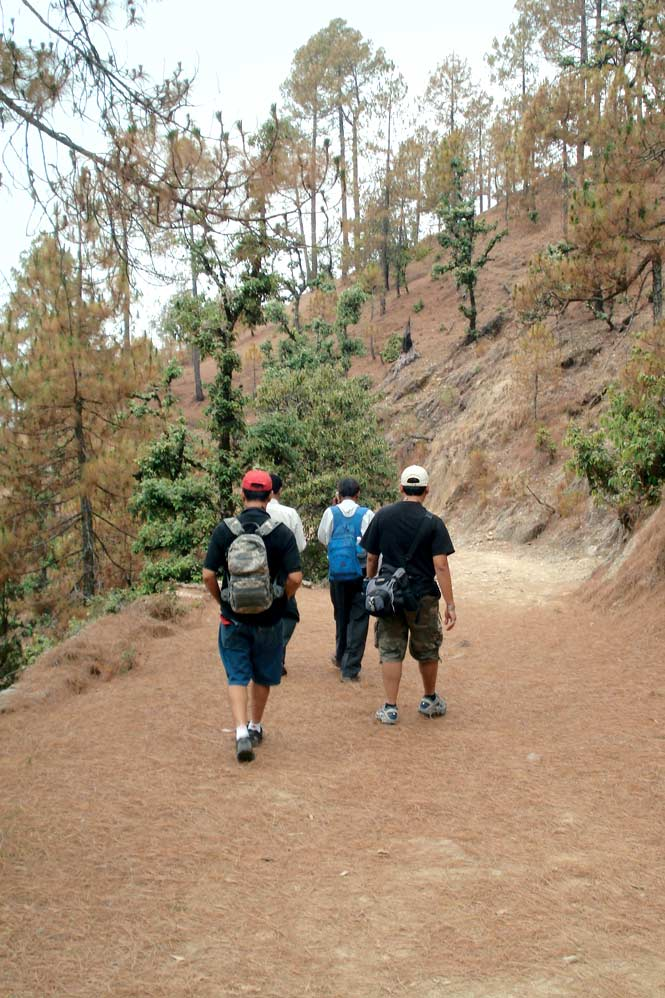 Stepping out in the Binsar Wildlife Sanctuary.