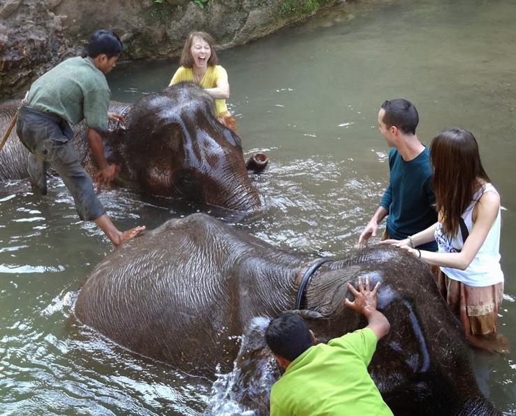 The group enjoying a bath.