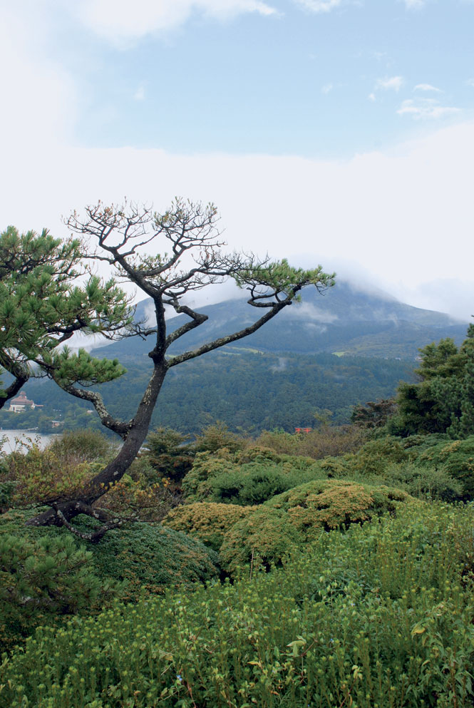Views of Mount Komagatake from Onshi-Hakone-Koen Park.