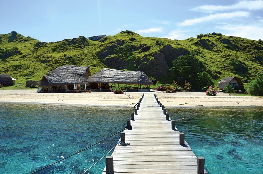 A wooden jetty leads to Komodo Island. Photo by Pedro O'Connor