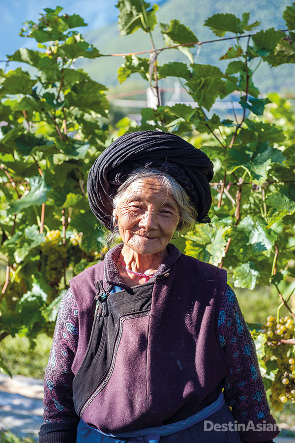 A grape grower on her vineyard in Tacheng Valley, in the far northwest of Yunnan.