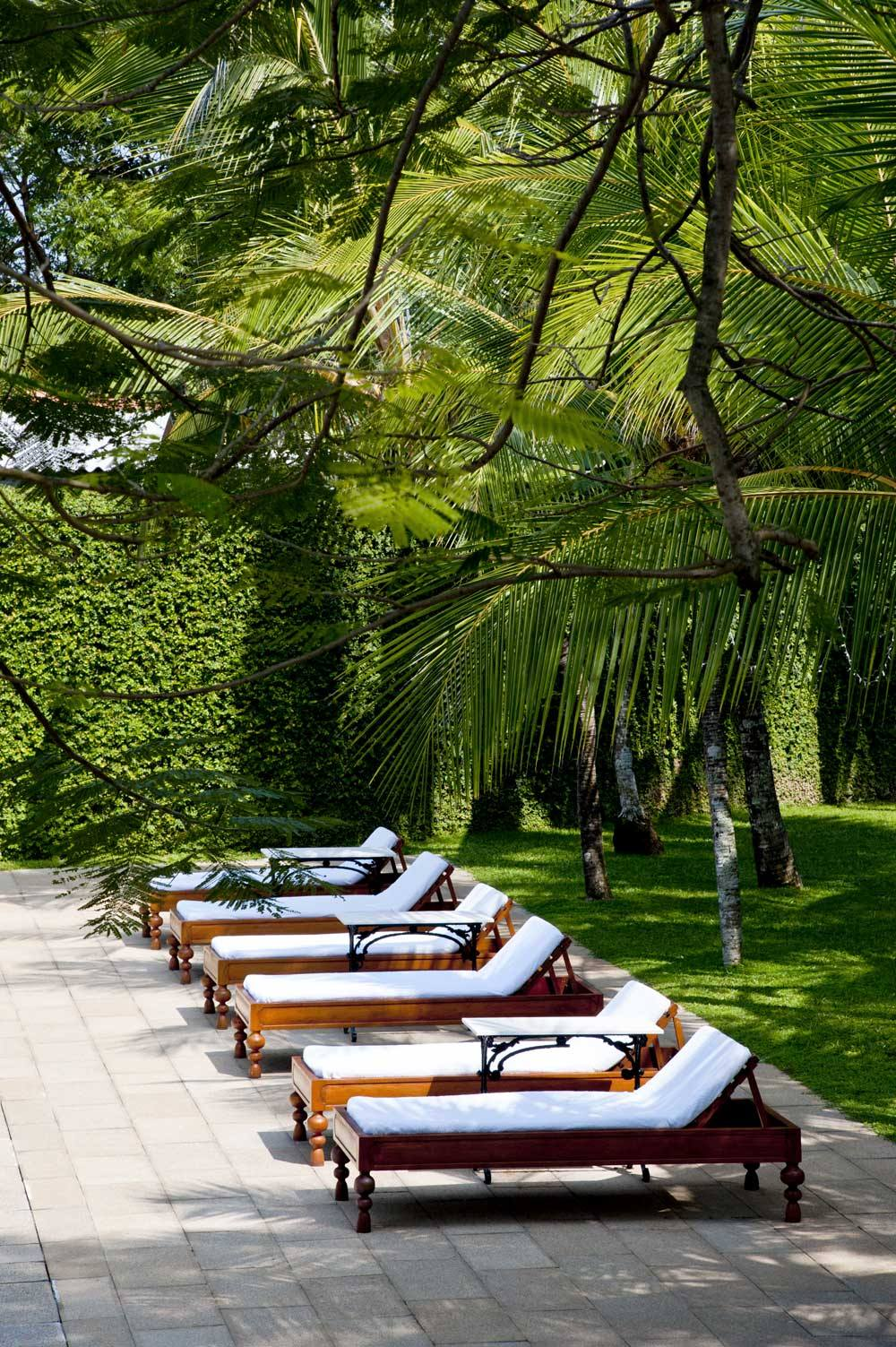 Poolside sun loungers in the Amangalla's gardens.