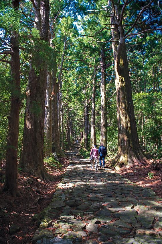 Hikers on the Daimon-zaka, a stone-paved path leading to Kumano Nachi Taisha.