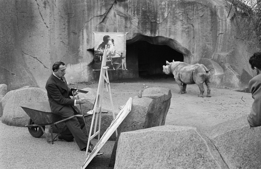 Salvador Dali sitting in an animal exhibit at the Paris Zoo.