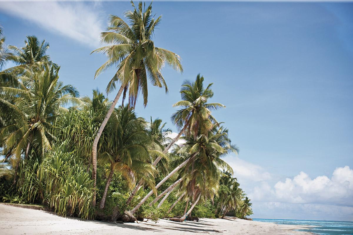 A secluded beach near Dedon.