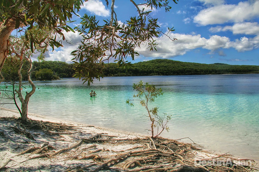 Apart from being a good place to cool off after a hike through the rain forest, the mildly acidic waters of picturesque Lake McKenzie are said to be good for the skin and hair.