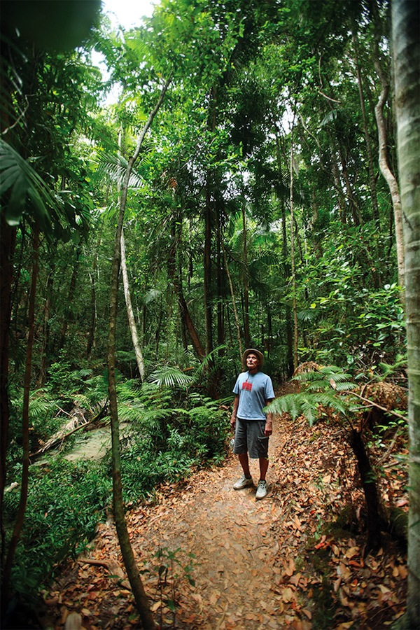 Dense rain forest punctuated by freshwater dune lakes covers most of Fraser Island's interior.
