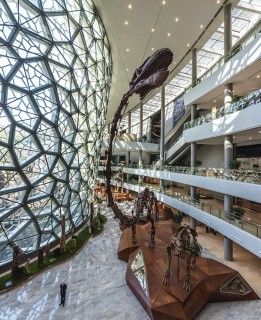 Dinosaur skeletons take pride of place in the central atrium, whose latticed facade references the cellular structure of plants and animals.