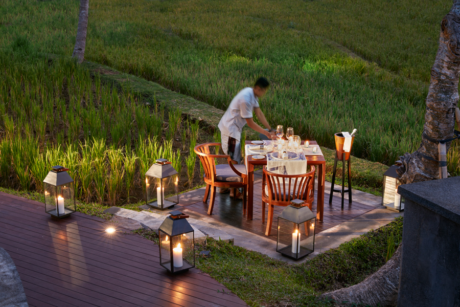 Dining-Beyond-by-Rice-Field