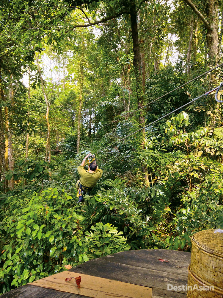 The resort's Tree Pod restaurant sees diners seated in a basket-like pod hoisted into the canopy and served by zip-lining waiters.