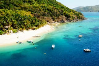 White sandy beaches, clear blue waters, and lush greenery of Flower Island.