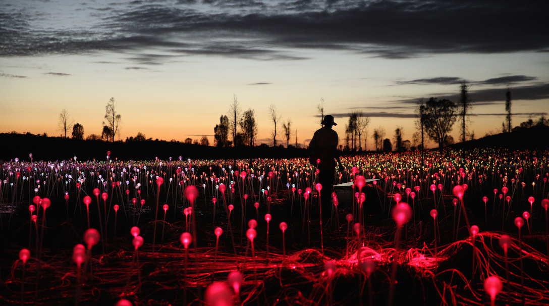 Field of Light_0X0A0370