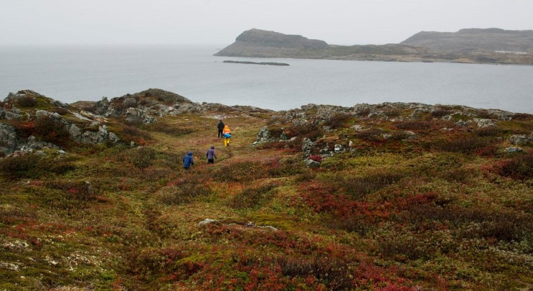 With a number of trails to choose from, exploring the island is best done on foot.