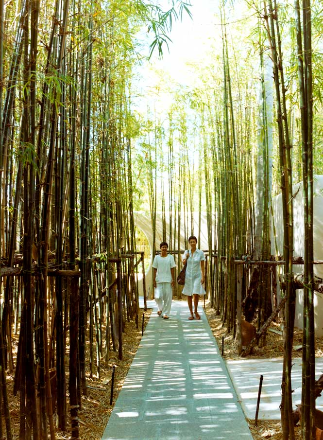 A Walkway at The Six Senses Destination Spa.