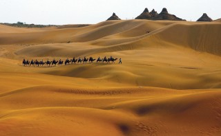 Camel treks across the dunes are an attraction at the Xiangshawan theme park in Inner Mongolia's Kubuqi Desert (Getty Images).
