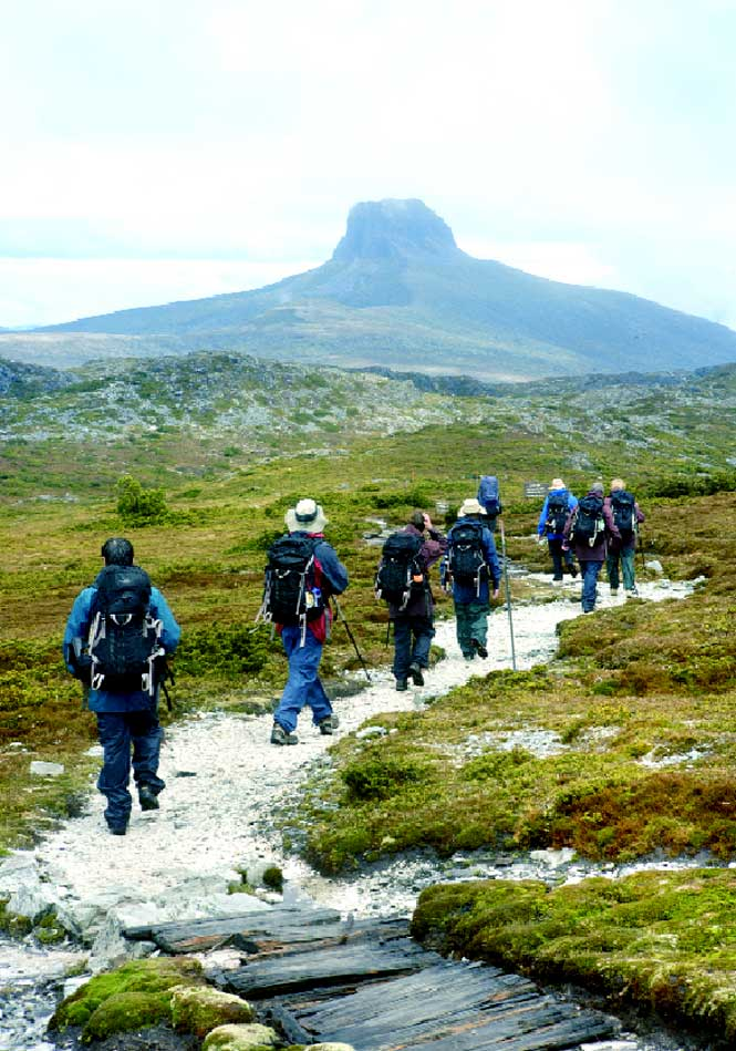 Hikers following a track through the rugged terrain of Cradle Mountain–Lake St. Clair National Park.