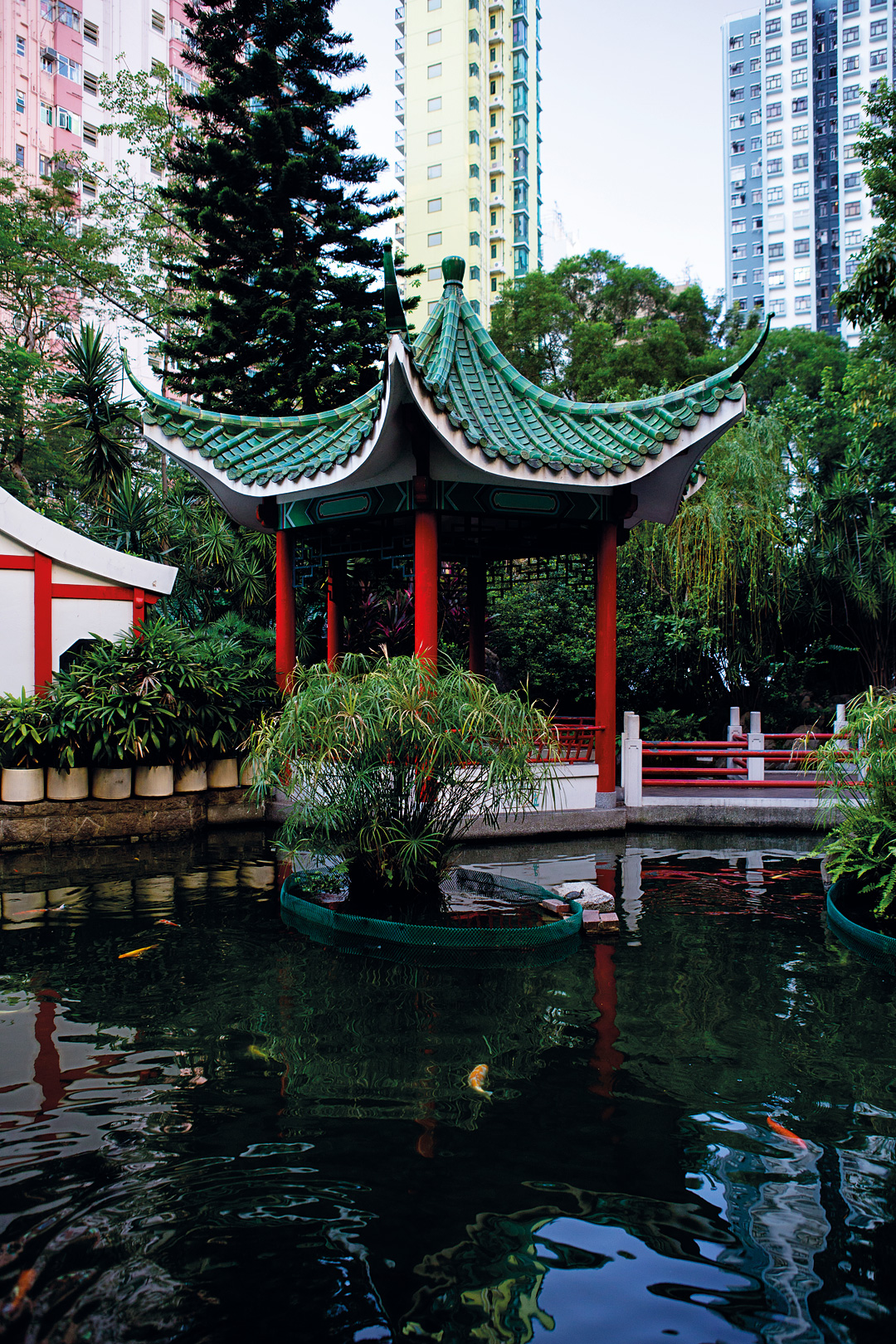 The lotus pavilion at Hollywood Road Park.