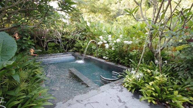 The Hot Vitality Pool.