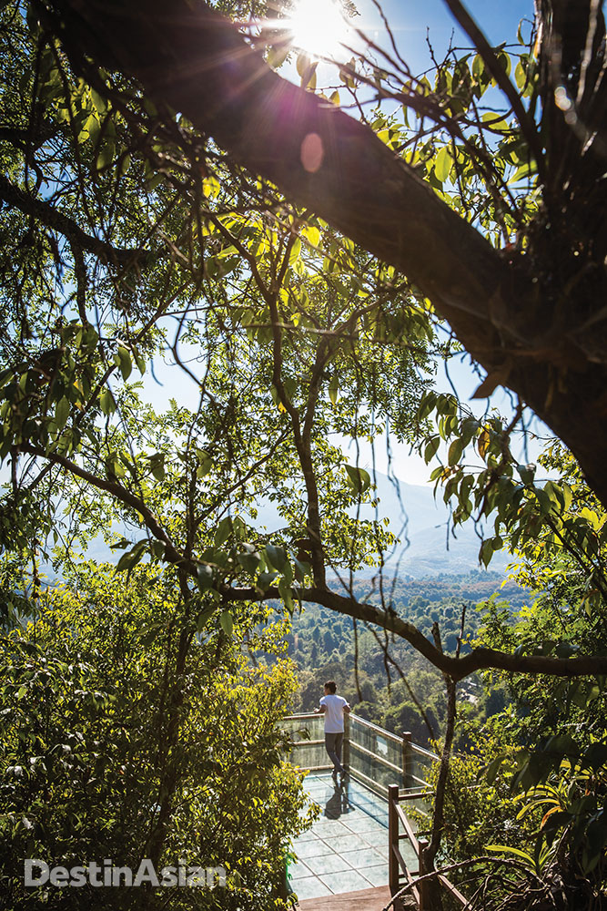 A hilltop lookout at the Xishuangbanna Tropical Botanical Garden affords expansive views of the surrounding forest.