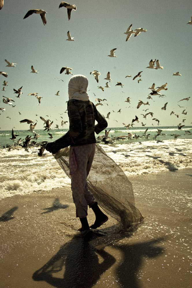 A fisherman competes with a congress of gulls for the sardine harvest.