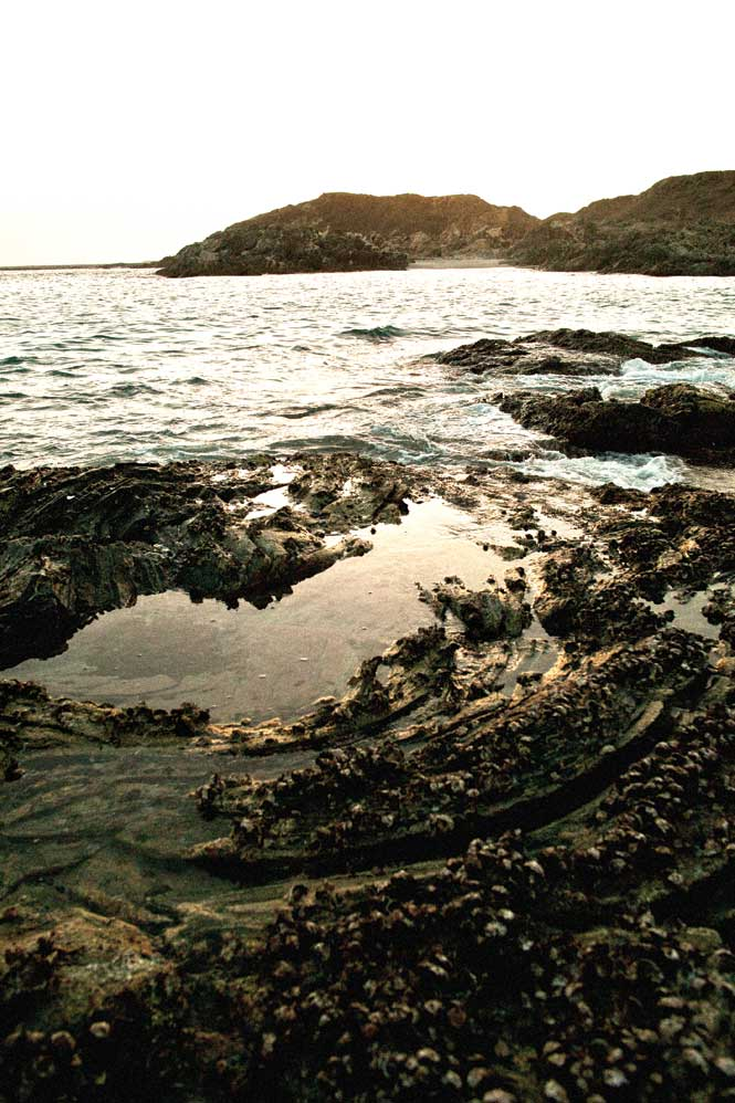Rock pools up the coast from Mirbat.