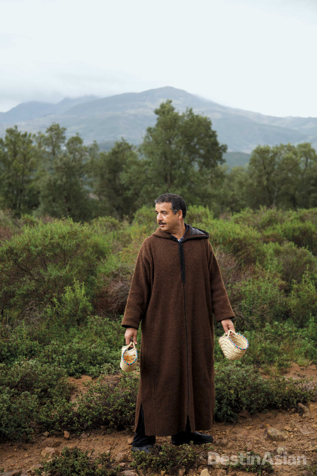 Local forager and mushroom expert Mohammed Elafia in the mountains near Chefchaouen.