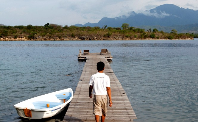 The Menjangan's jetty extends into a mangrove-fringed bay.