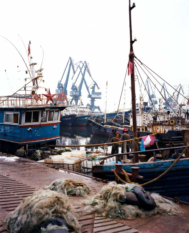 Dalian's fishing fleet hauls in salmon, sturgeon, and tilapia, among other sea creatures.