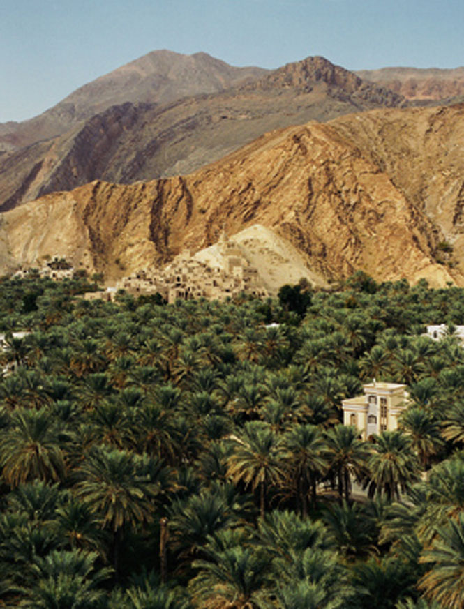 Birkat Al Mawz, an oasis village southwest of Muscat.