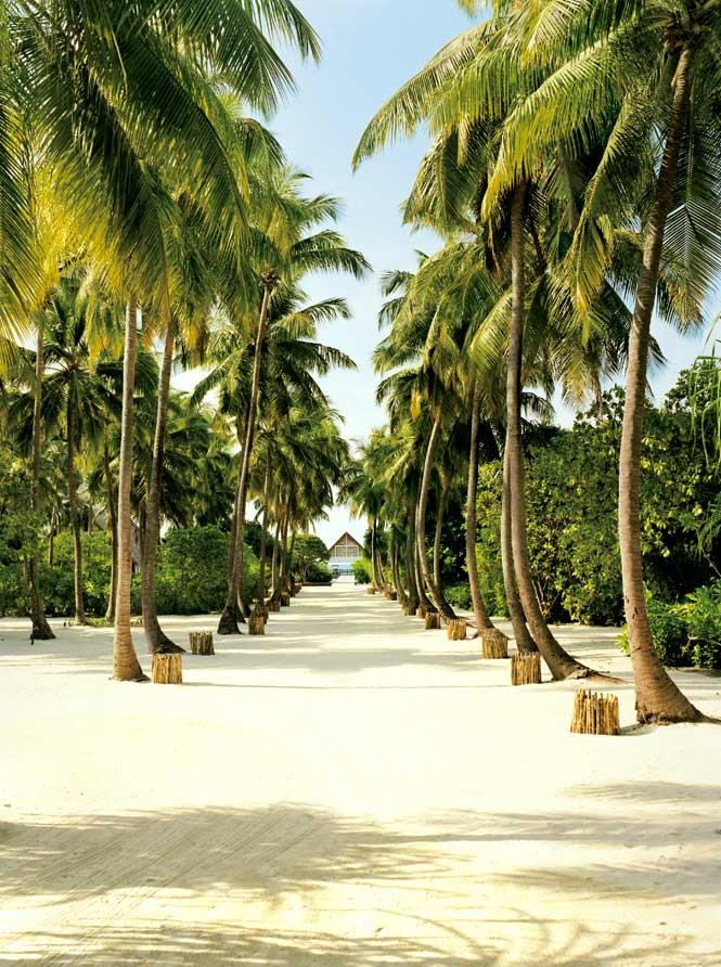 A path to the beach at the Four Seasons Resort Maldives at Landaa Giraavaru.